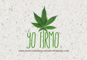 LOGO-YO-FIRMO-2-e1358875233594