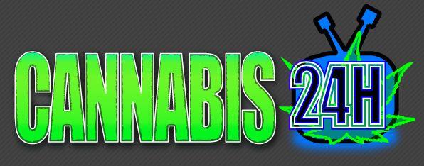 Cannabis24h