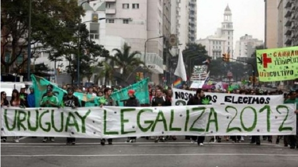 Uruguay tendrá su primer club de cultivadores de cannabis