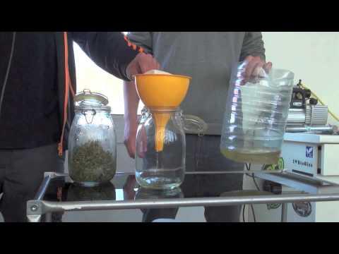Extracciones para un uso medicinal