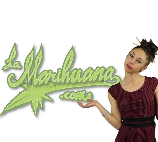 Marihuana televisión 13 , 1er aniversario