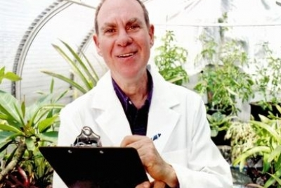 Ed Rosenthal responde, las mismas semillas tan diferentes.