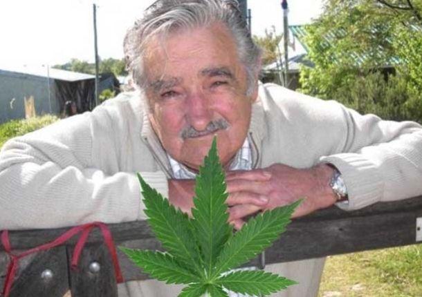 La legalización de la marihuana avanza en Uruguay