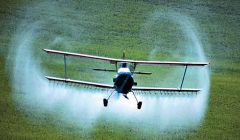 Riesgo por pesticidas en la marihuana comercial