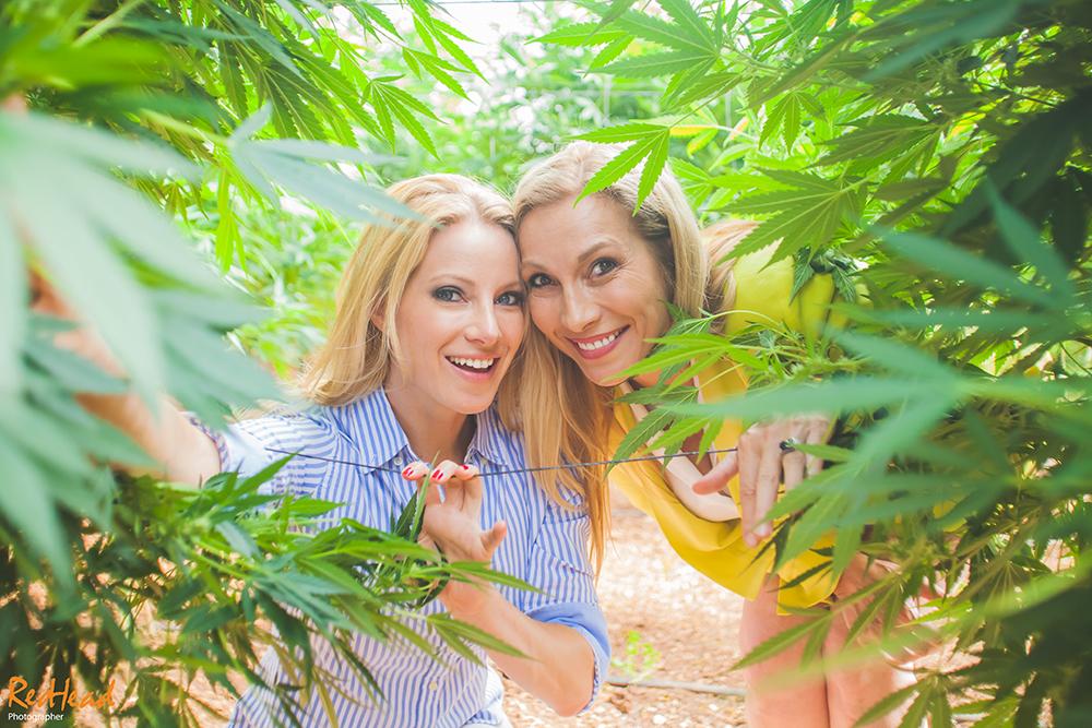 Las 'madres de la marihuana' de Beverly Hills, visitan Tikun Olam