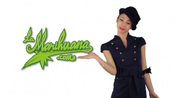 Marihuana Televisión News 17