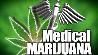 Los avances de la marihuana medicinal en 2013.