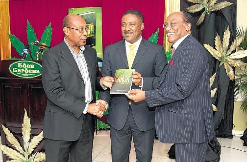 En Jamaica se quiere crear una gran industria legal del cannabis