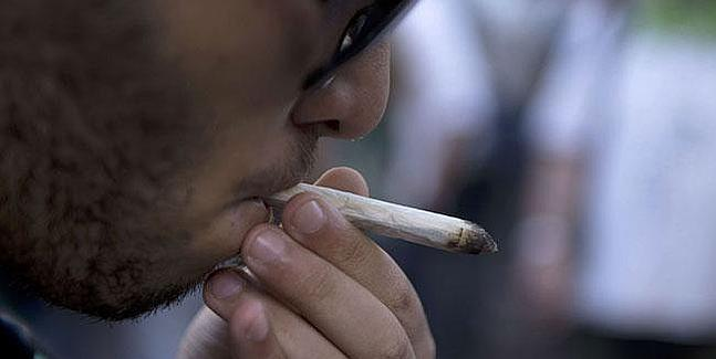 Donostia se convierte en la primera localidad en regular los Club Sociales de Cannabis