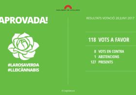 Ley Cannabis Cataluña: luz verde a la regulación